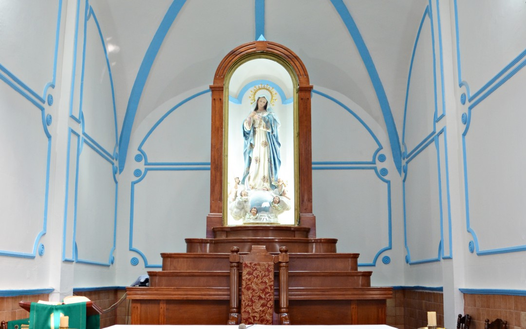 Virgen María, Rosa mística…